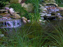 Pond with Waterfalls